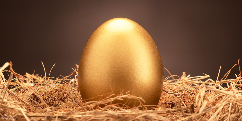 Gold egg in layer of straw