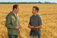Male agent and farm owner in corn field