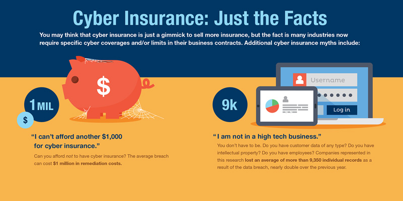 Cyber Insurance info-graphic callout